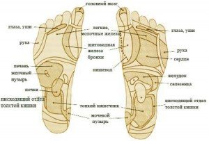 стопы ног, биологически активные точки, массаж